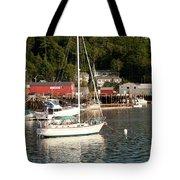 Water Song 1459 Tote Bag