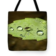 Water Strider Has A Drink At The Floating Leaf Cafe Tote Bag