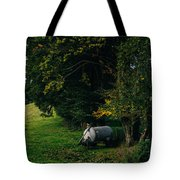 Water Tank In A Pasture Tote Bag