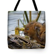 Water Vole Cleaning Tote Bag
