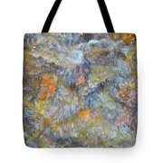 Water Whimsy 179 Tote Bag