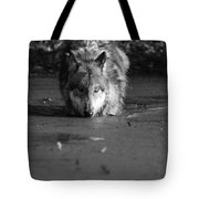 Water Wolf I Tote Bag