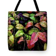 Watercolor Colorful Leaves After A Shower 1771 W_2 Tote Bag
