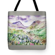 Watercolor - Yankee Boy Basin Landscape Tote Bag