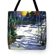 Watercolor3538 Tote Bag