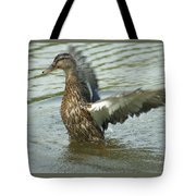 Watercovered Wingflapper Tote Bag