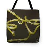 Waterdrops Catch By Grapevines Tote Bag