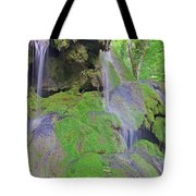 Waterfall Details Tote Bag