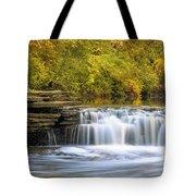 Waterfall Glen, Lemont, Il Tote Bag