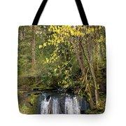 Waterfall In A Park, Whatcom Creek Tote Bag