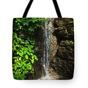 Waterfall In Forest Tote Bag by Elena Elisseeva