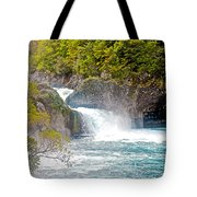 Waterfall In Vicente Perez Rosales National Park Near Puerto Montt-chile  Tote Bag