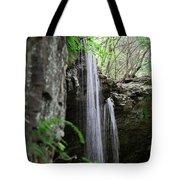 Waterfall Portrait Tote Bag