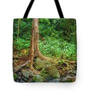Waterfalls And Banyans Tote Bag