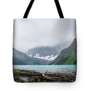 Waterfowl Lakes Tote Bag by Adnan Bhatti