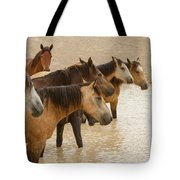 Waterhole Band Tote Bag