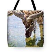 Watering Kudu Tote Bag