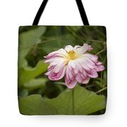Waterlily Phasing Out Tote Bag