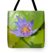 Waterlily Shadow Of Perfection Tote Bag