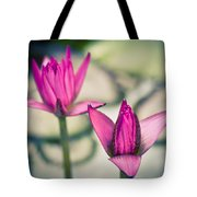 Waterlily Twins - Tropical Dream In The Pond Tote Bag by Priya Ghose