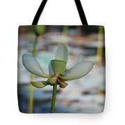 Waterlily Wash  Vertical Tote Bag