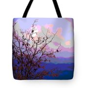 Watermelon Sky Tote Bag by Barbara Schultheis