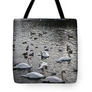 Waterpark Tote Bag