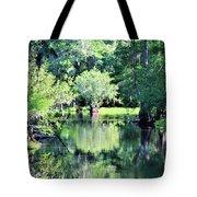 Waterscape #1 Hillsborough River Tote Bag