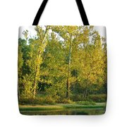 Waterscape #44 Tote Bag