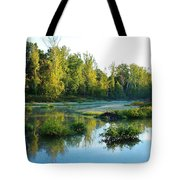 Waterscape #46 Tote Bag