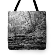 Waterscape In Bw Tote Bag
