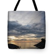 Waterscape In Gray And Yellow Tote Bag