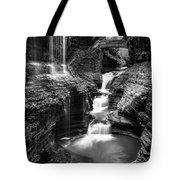 Watkins Glen Rainbow Falls #2 Tote Bag