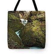 Watkins Glen Waterfall Tote Bag