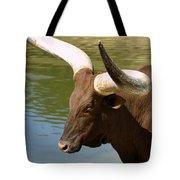 Watusi Bull Tote Bag