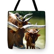 Watusi Cattle Tote Bag
