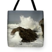 Wave At Shore Acres 2 Tote Bag
