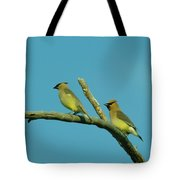 Wax Wings  Tote Bag