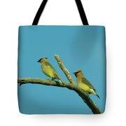 Wax Wings  Tote Bag