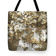 Waxleaf Privet Blooms On A Sunny Day In Sepia Tones Tote Bag