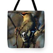 Waxwing On Guard Tote Bag