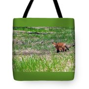 We Are 3 Red Fox Puppies Tote Bag