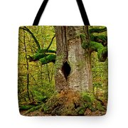 We Are Here Since 1000 Years 1 Tote Bag