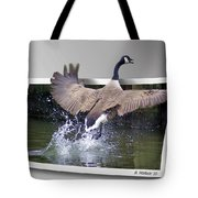 We Have Liftoff Tote Bag