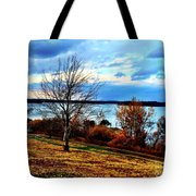 Wealth Of The Autumn Season Tote Bag