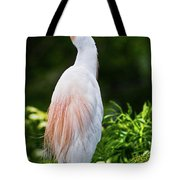 Wearing Spring Colors Tote Bag