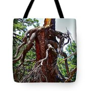 Weather Beaten Tote Bag
