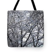 Weather Patterns Tote Bag