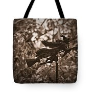 Weather Vane Tote Bag