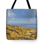 Weathered Coquina Ocean Rocks Tote Bag